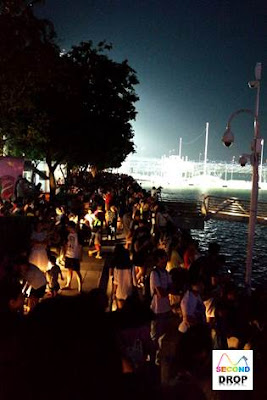 NDP Fireworks 2015 Crowded