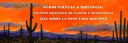 CURSO VIRTUAL A DISTANCIA DE CULTIVO ORGÁNICO DE CACTUS Y SUCULENTAS-CLIC EN LA FOTO PARA MÁS INFO