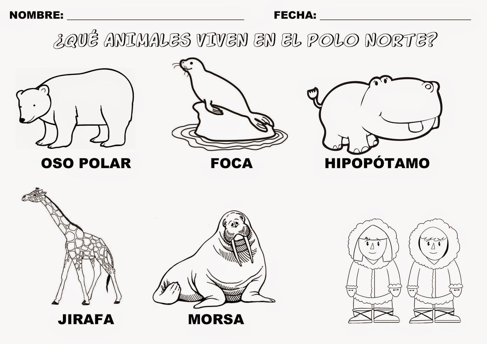 Trabajando con personitas: Los Animales que viven en el Polo Norte