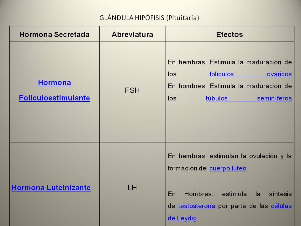 El Sistema Endocrino: Sistema Endocrino