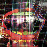 The Top 50 Albums of 2012: 10. Animal Collective - Centipede Hz