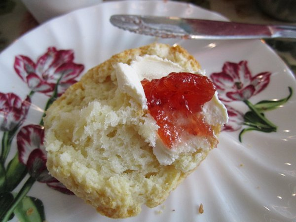 Tea+and+Sympathy+6-24-12+%2811%29+Scone+with+Clotted+Cream+and+Jam.JPG