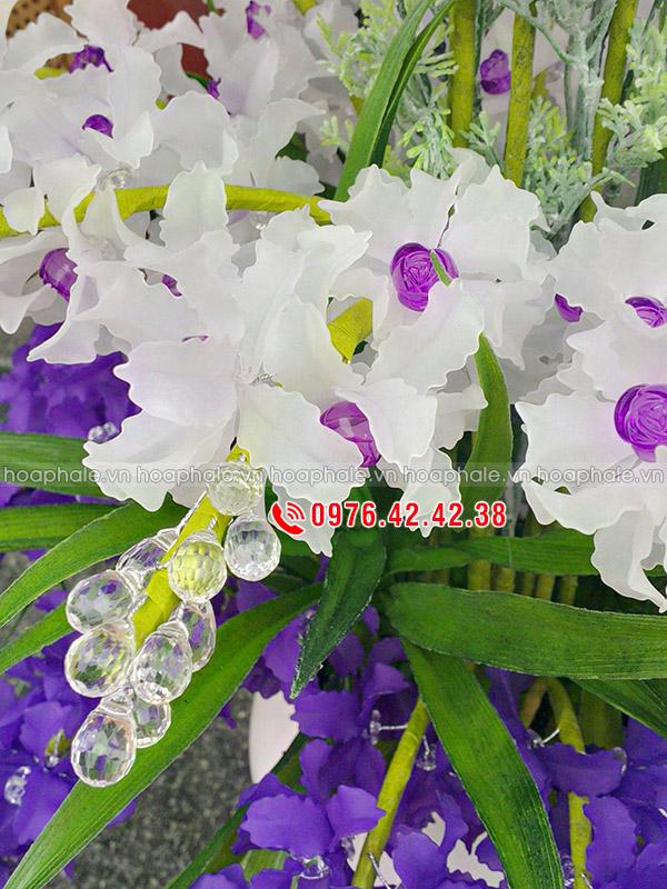 Hoa lan tím trắng 3 tầng