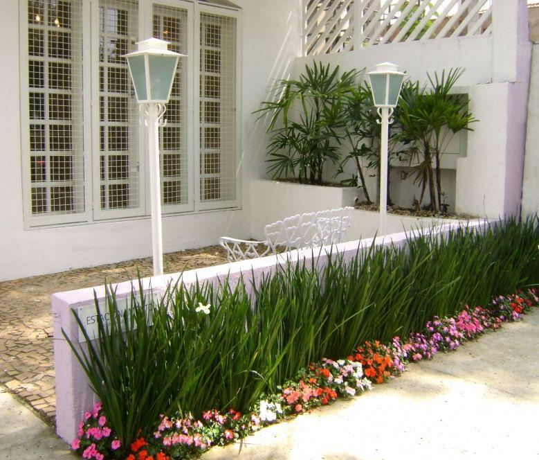 Num pequeno espaço, um belo jardim de moreias