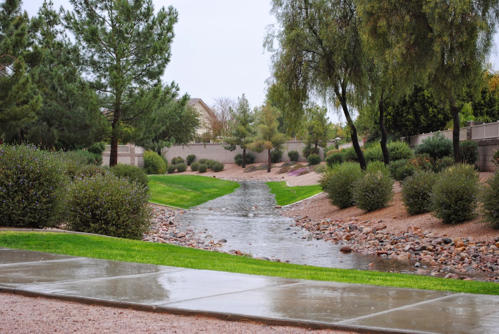 Heavy rains drain through the greenbelts in Phoenix