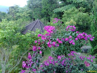 tempat wisata kampung toga sumedang