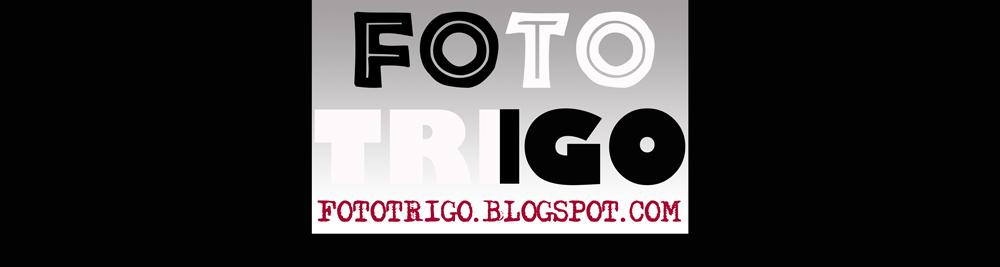 FOTO TRIGO