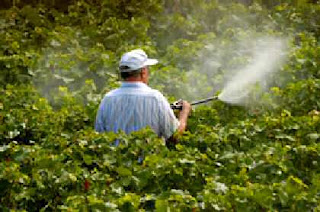Dangerous chemicals in the workplace spraying