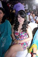 Hansika, Motwani, Cute, pink, saree, cleavage