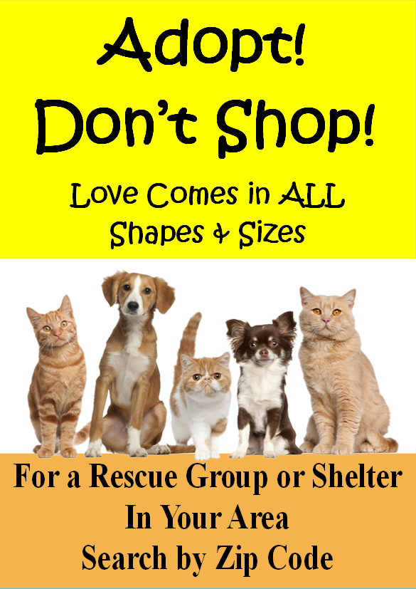 Animal Shelters & Rescue Groups, petsnmore.org