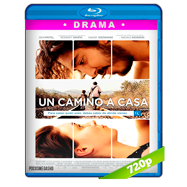 Un camino a casa (2016) BRRip 720p Audio Dual Latino-Ingles