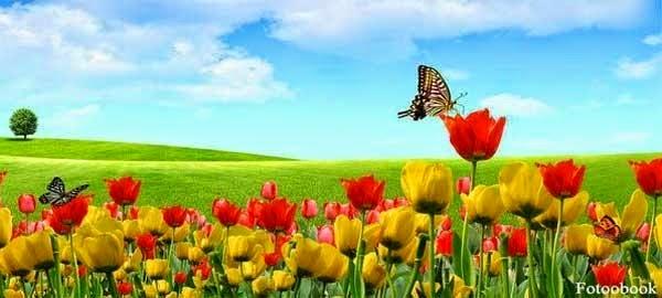 حكم الاحتفال بأعياد الربيع وشم النسيم، وهل هي فرعونية أم يوهودية أم مسيحية؟!