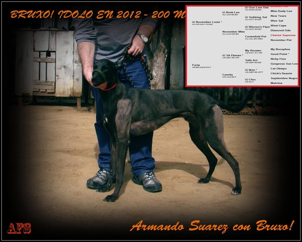 Bruxo! Se destaca en los 200 metros - En la ciudad de Bage Rs  el 18/03/2012