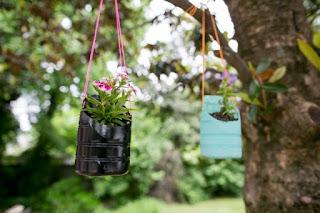 5 Ideas Creativas Para Diseñar Jardines De Interior