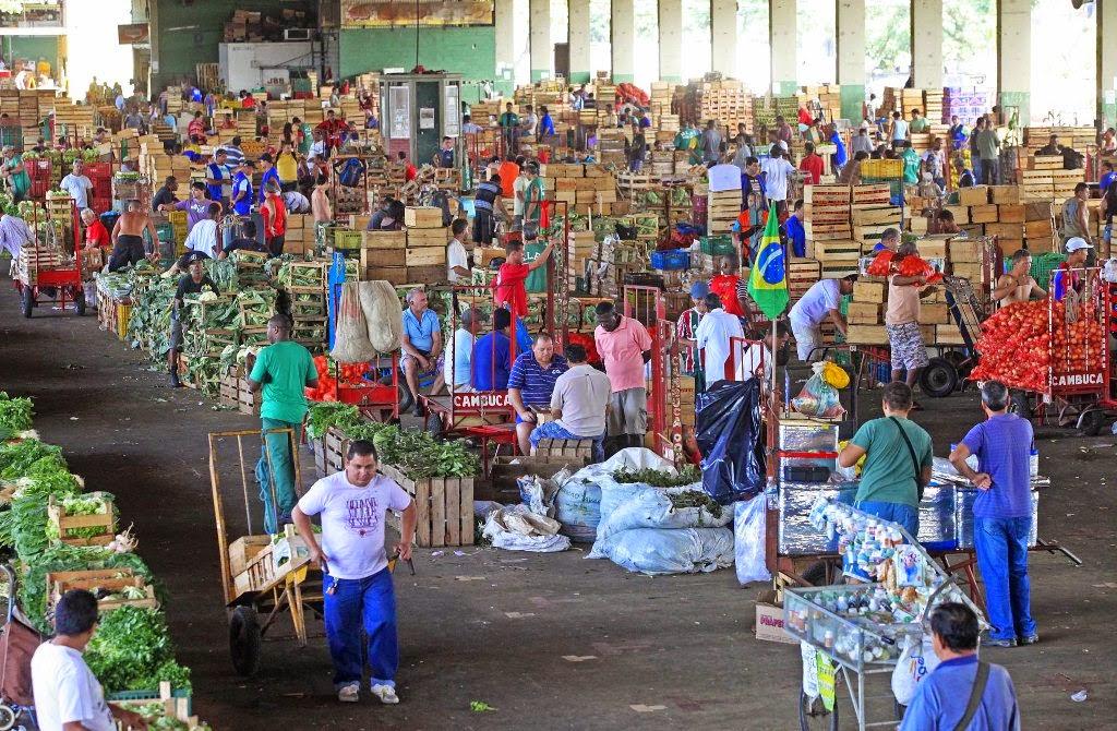 Primeiro mercado de produtos orgânicos do estado será inaugurado na Ceasa-foto Marcelo Horn