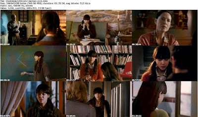 Download An Invisible Sign (2011) DVDRip | 350 MB