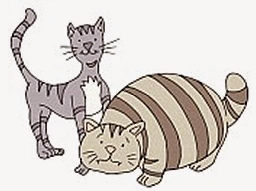 Gato flaco y gato gordo son amigos inseparables.