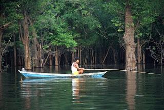 Penulisan: KEPENTINGAN SUNGAI Sungai_1