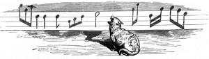 Vida y opiniones filosóficas de un gato