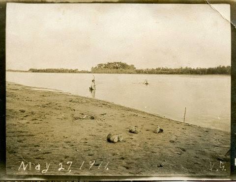 Net Fishing - 1911