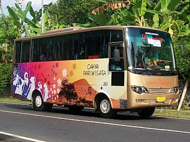 Mitshubisi 84 GBC - MEDIUM BUS AC 29 SEAT'S