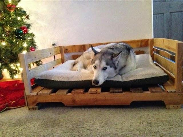EcoNotascom Camas Para Perros Con Palets Reciclados