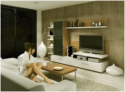 Entertainment centers in Living Room. Organize your living room