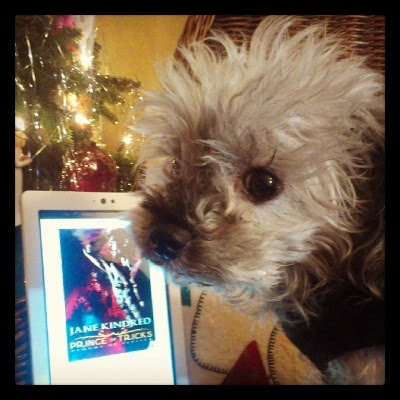 A fuzzy grey poodle, Murchie, stands before a lit Christmas tree and a white Kobo with the cover of Prince of Tricks on its screen. The red-tinged cover depicts a pale-skinned, shirtless man stretching with his hands behind his head. Onion domes are visible in the background.