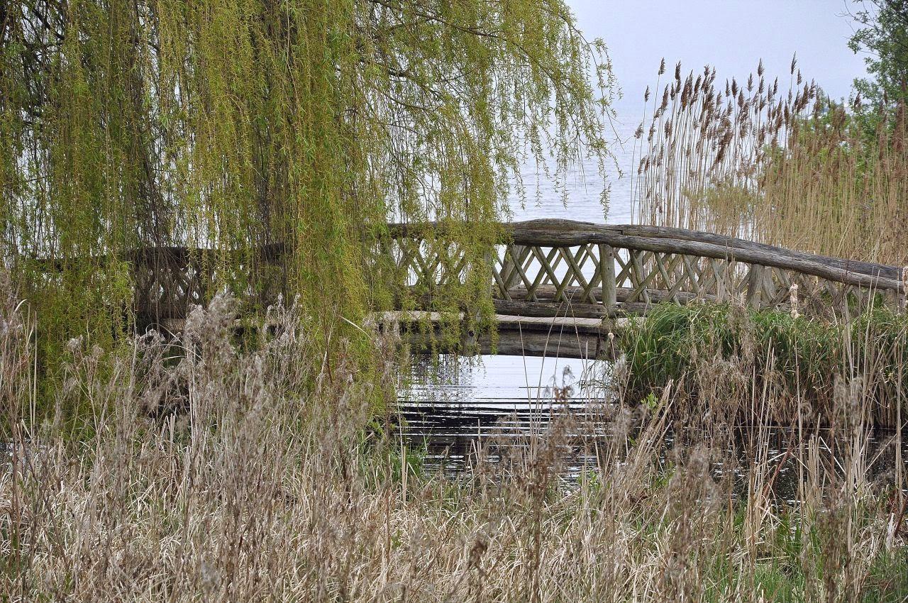 stary drewniany mostek
