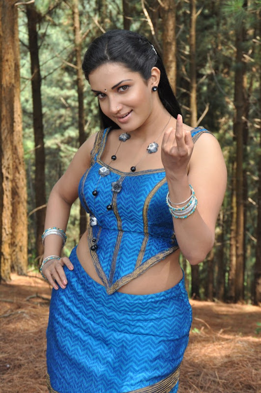 Mallukattu Tamil Movie Actress Honey Rose Hot Photo Stills hot images