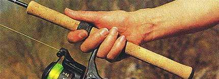 dùng tay phải nắm cán cần cây ngay tại ví trí có gắn máy câu. Kẹp chân máy câu vào giữa ngón tay giữa và ngón tay áp út để nắm chắc chắn cả cần và máy.