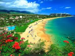 Tahukah Kamu: Alfabet Hawaii hanya berisi 12 huruf.
