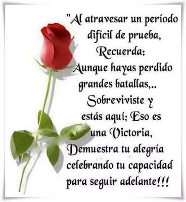 Imagen de Rosas Con Mensajes De Superacion