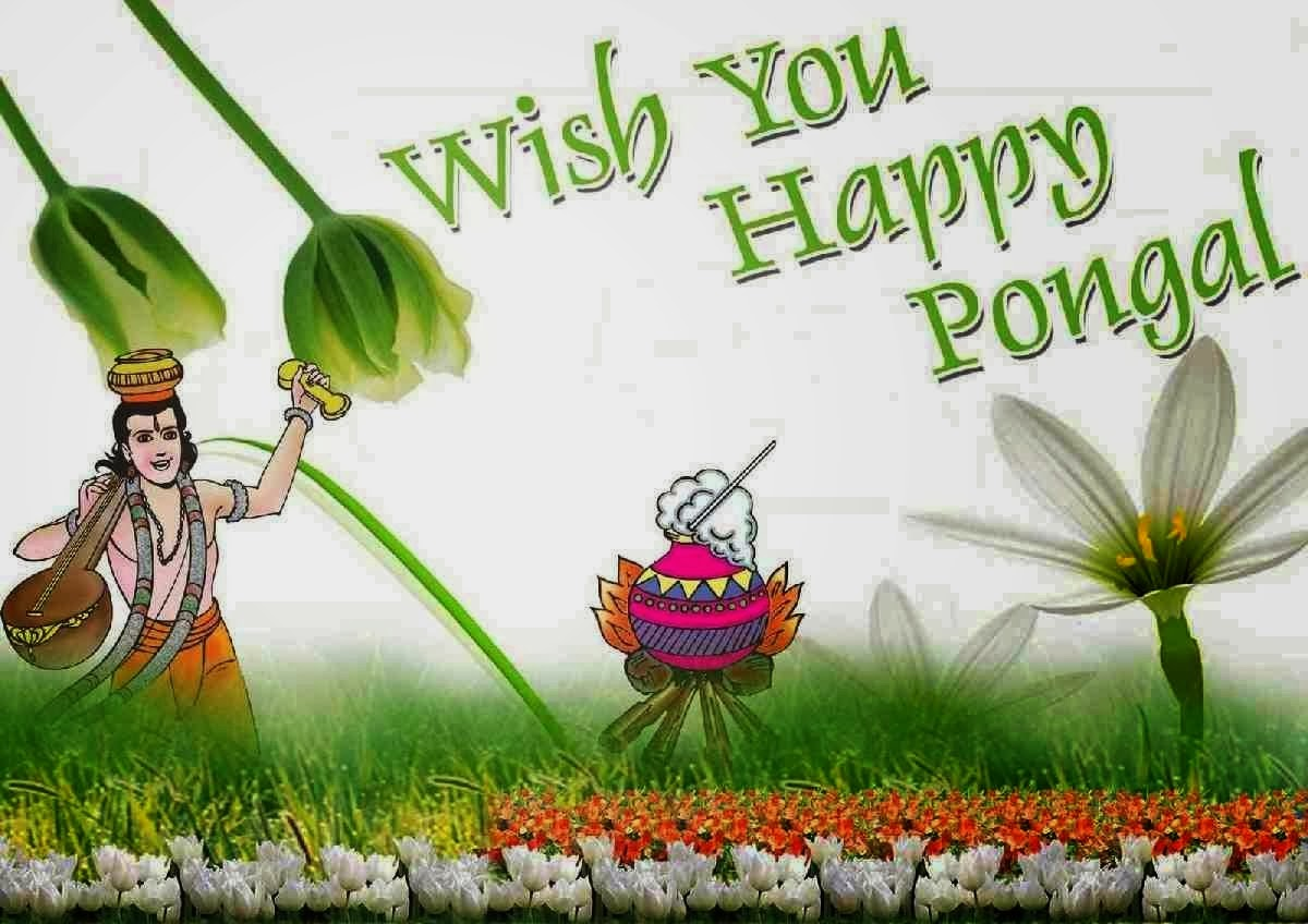 Happy Pongal 2014 Sms Quotes Messages Scraps Pongal 2014 Sms