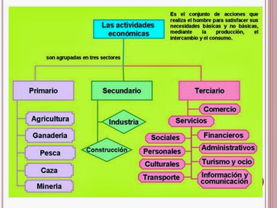 Circuito Productivo Del Algodon : Circuito productivo de la vid apexwallpapers