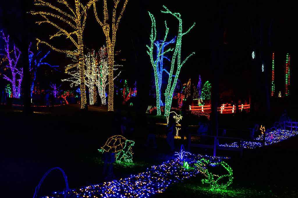Holiday Lights at Winter Walk of Lights