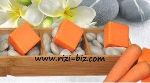 http://1.bp.blogspot.com/-M7MZSq43F0g/T7InB7Hdf2I/AAAAAAAABxE/J4AvZaqTTVI/s1600/papaya-riz2.jpg