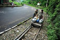 န Darjeeling, 16 June :
