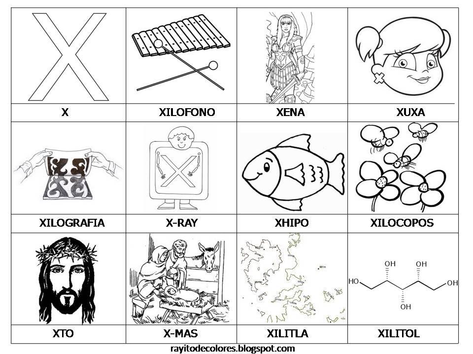 Palabras con X