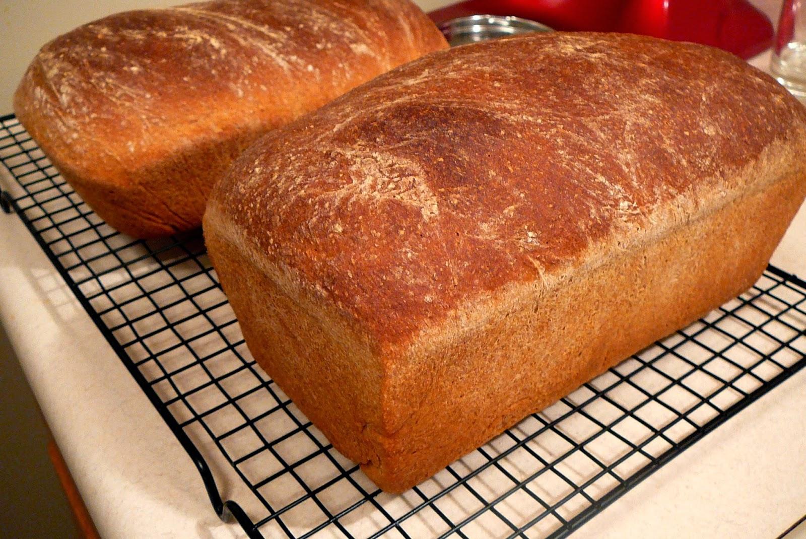 Pan de miel integral para bajar de peso