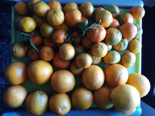 Naranjas al Día