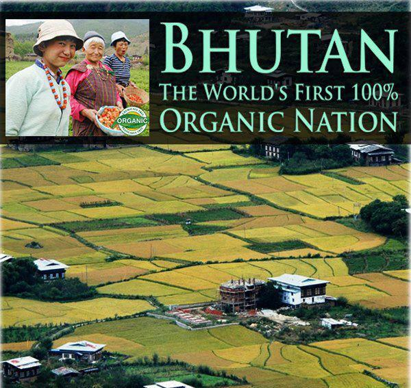 Bhutan set to plough lone furrow as worlds first wholly organic country (Video)
