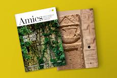 Revista n16 d'Amics dels Castells.
