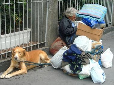 Você realmente não tem condições de cuidar de um cachorro???