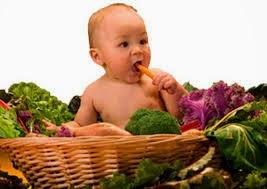 makanan untuk anak