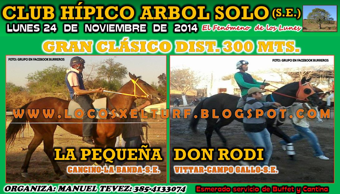 24-11-14-CLAS-HIP. ARBOL SOLO
