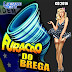 Baixar – Furacão do Brega – CD 2016