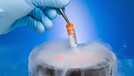 Frozen-Embryo-Transfer-VCRM