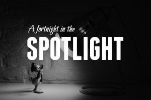 Fortnight in the Spotlight