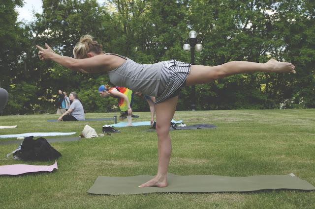 Yoga Warrior series, Warrior 1, Warrior 2, Warrior 3, Asanas, Home Yoga Practice, Yoga philosophy, Noah Krol,